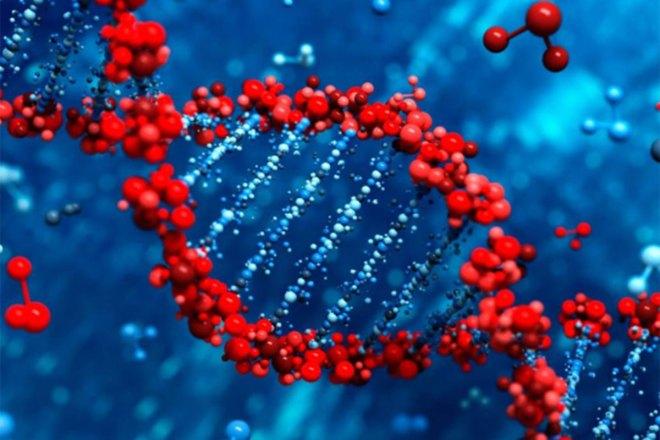 Un estudio del CSIC buscará las causas genéticas de las diversas reacciones inmunitarias a Covid-19