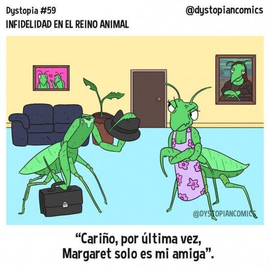 La infidelidad de las mantis es muy difícil de ocultar
