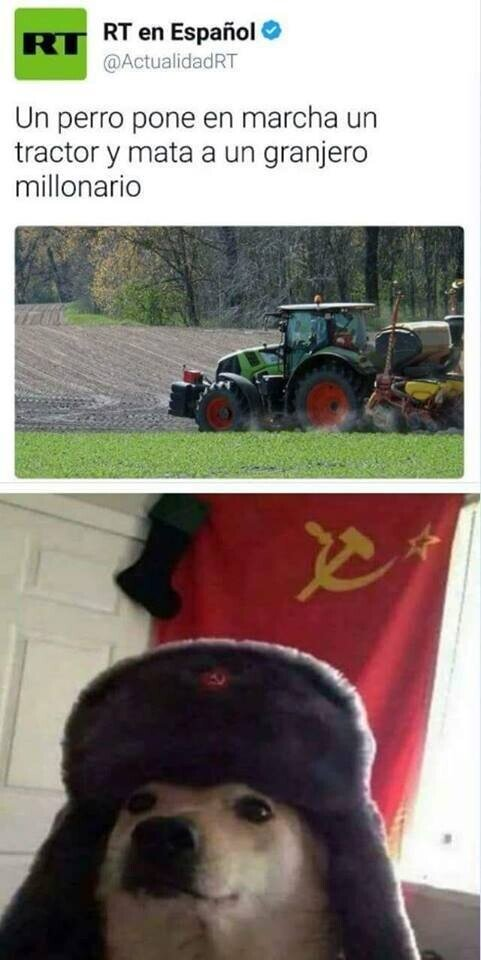 El perro comunista