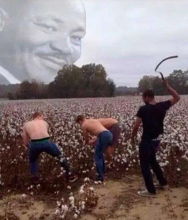Martin Luther King estaría orgulloso