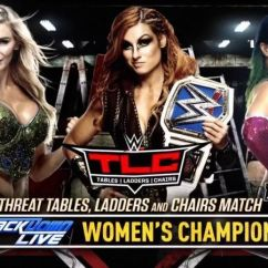 What Are Wwe Chairs Made Of Cream Wingback Chair Tlc 2018 3 Reasons Smackdown Women Should Main Event The Show History Is Going To Be At