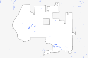 Race and Ethnicity in the Cicero Township, Cook County