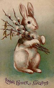 Easter bunny postcard from 1907