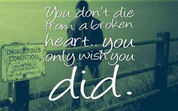 Broken Heart Fb dps