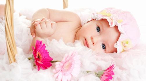 Frases Para Sobrinho Bebe Tumblr: 700+Frases Para Bebe Recem Nascido Chegada Cartão Mensagem