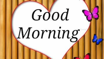 Good-Morning-Shayari-download-Good-Morning-Video