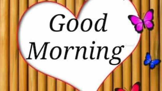 Best Good Morning Status Video