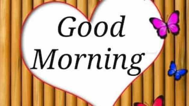 Good-Morning-Shayari-download-Good-Morning-Video