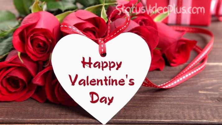 Valentine Day WhatsApp Video Download
