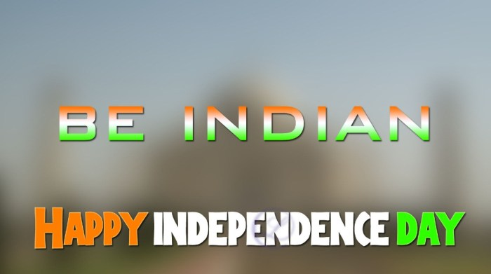 100+ Awesome Independence Status Quotes 2016