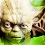 Thomas Hawk/Master Yoda|https://goo.gl/zVONGq