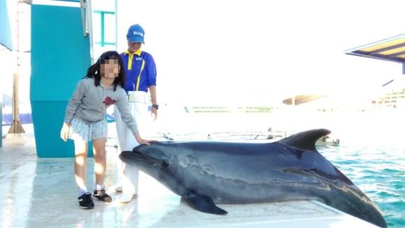 鴨川シーワールド イルカと写真