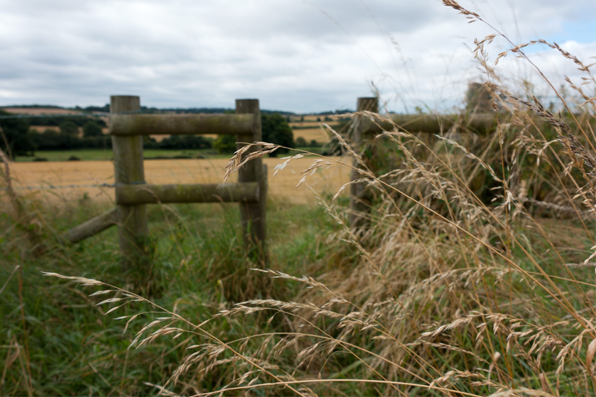 View over stile