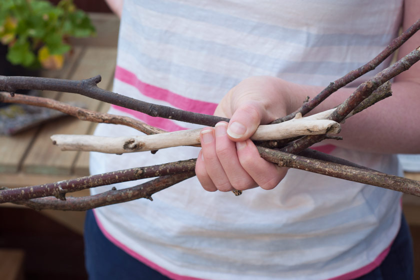 Handful of sticks