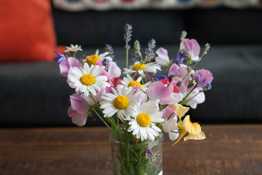 Jar of mixed flowers