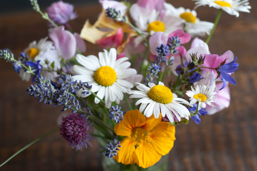 Closeup of mixed flowers