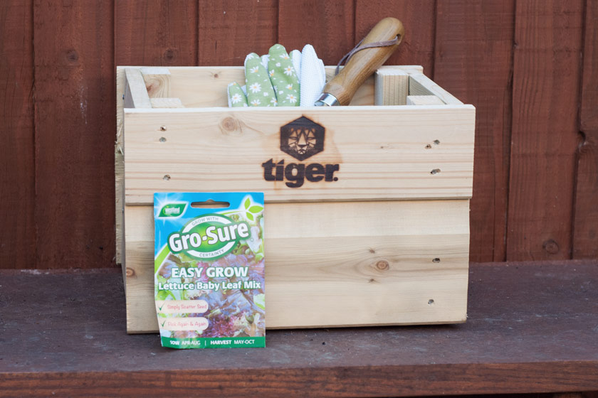 Planter and gardening tools