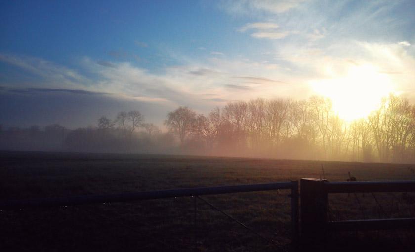 Sun rising over fields