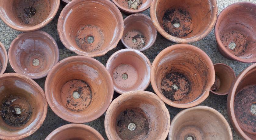 Terracotta gardening pots