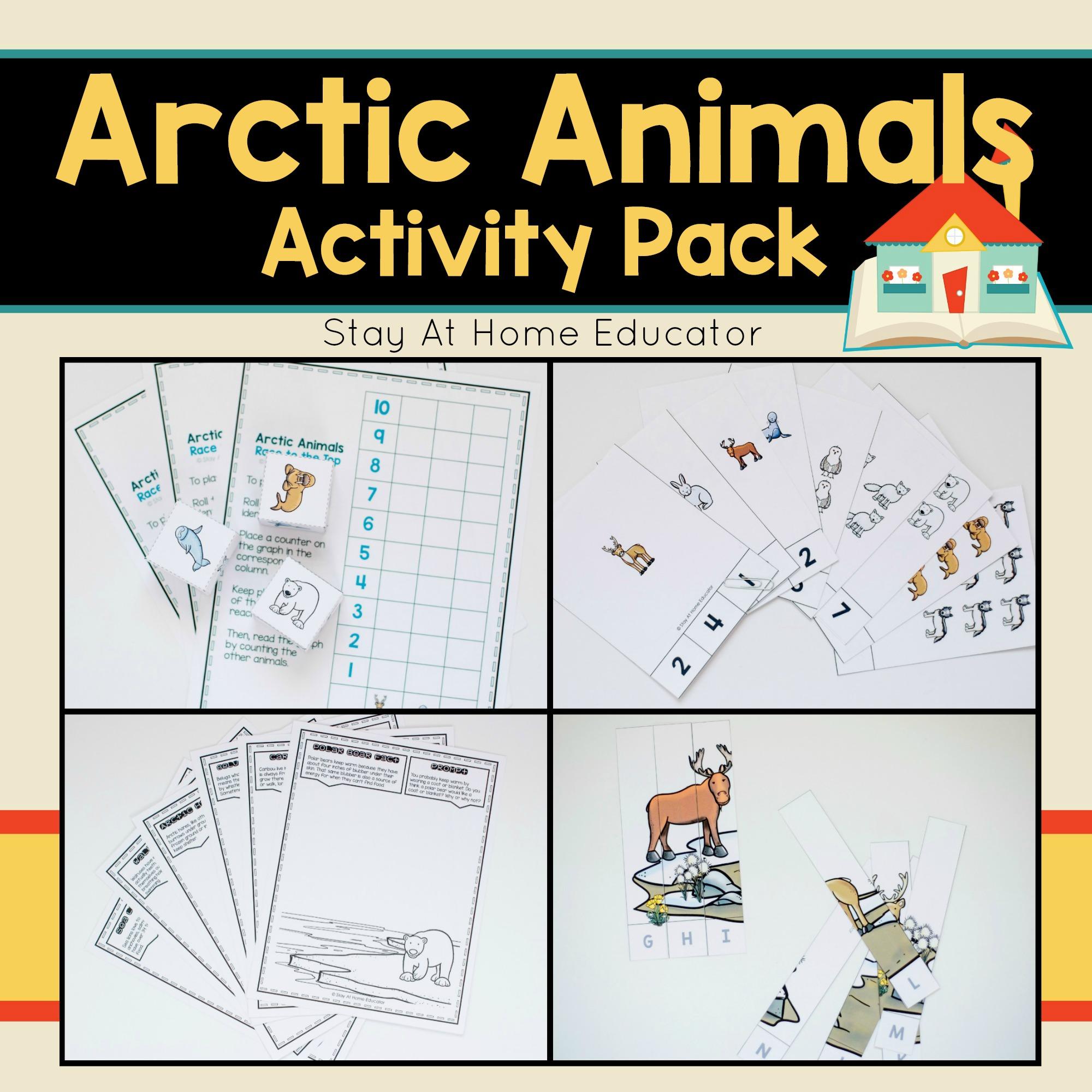 Arctic Animals Activity Pack For Preschoolers