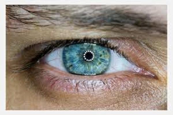 Fibromialgia, o nervo óptico, e neurodegeneração