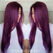 bold and trendy dark purple
