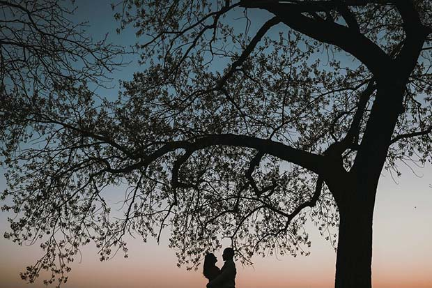 Stunning Tree Photo for Romantic Engagement Photo Idea