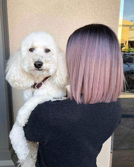 Sleek, Light Pink Ombre Bob