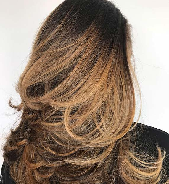 Black to Honey Blonde Hair