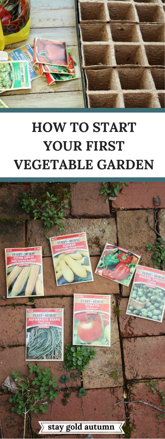 How to start your first vegetable garden: easy step by step instructions with pictures to help you begin eating your very own home grown vegetables! | Stay gold Autumn