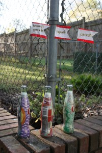 DIY garden plant markers: an easy way to recycle glass bottles and add more color to your yard!   Stay gold Autumn