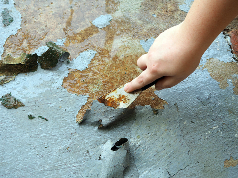 I am using a metal putty knife to strip paint off of our concrete with a water hose sprayer. I can already tell it is going to look a lot better! | Stay gold Autumn