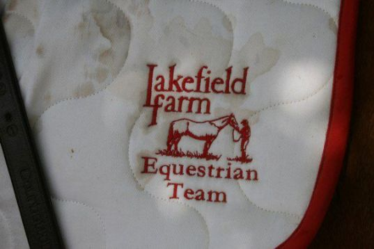 Team saddlepad