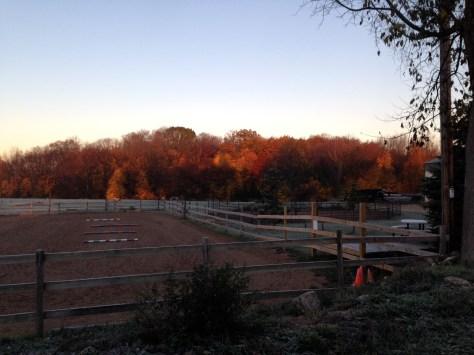 Sunrise on fall foliage