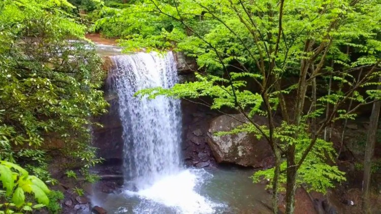 Stay In Ohiopyle - Cucumber Falls
