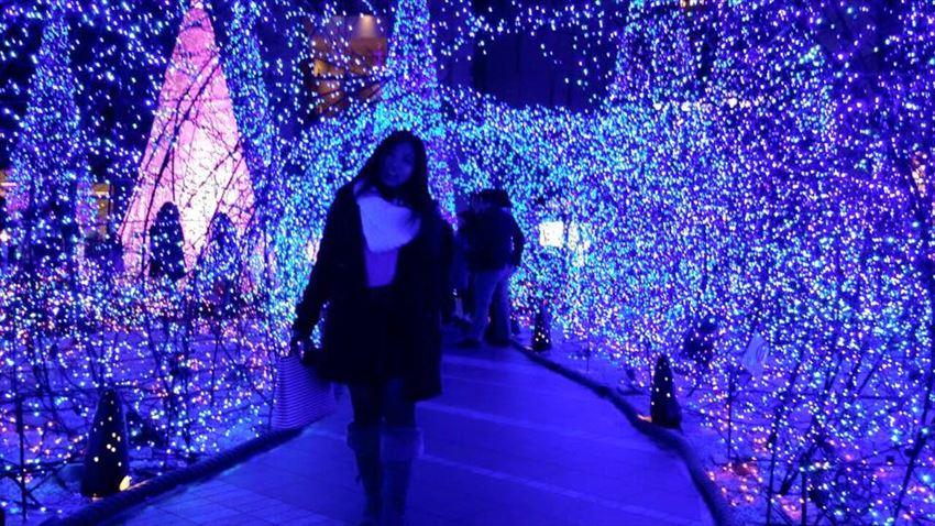 tokyo christmas light display