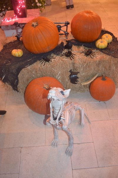 Custom Halloween Decor