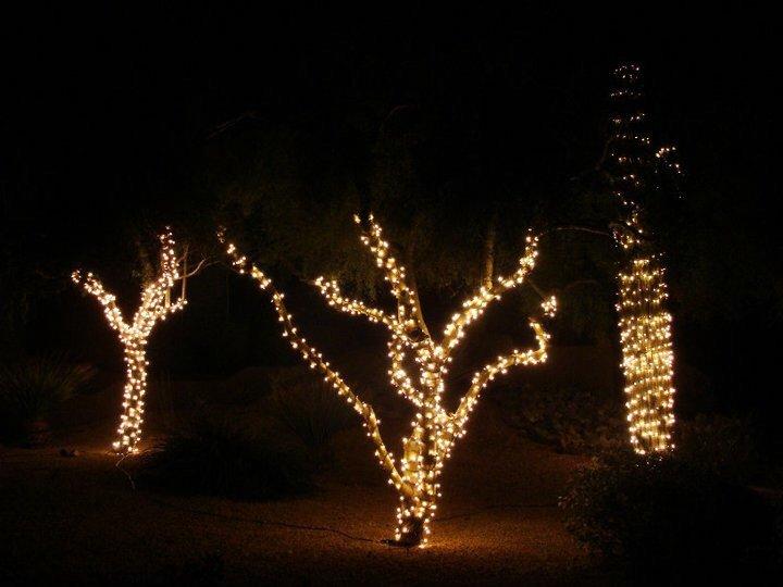 Warm White Mini Lights