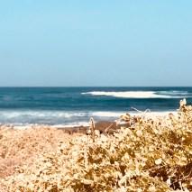 Northshore of Fuerteventura