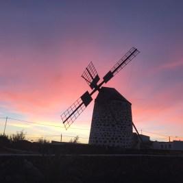 Windmill in Lajares
