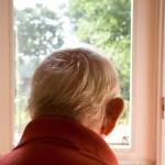 back of elderly man's head look out window