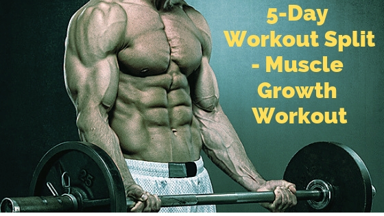 Best 5 Day Split Workout Routine – For Muscle Growth