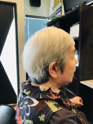 高知市髪質改善と言えば美容室ステイト