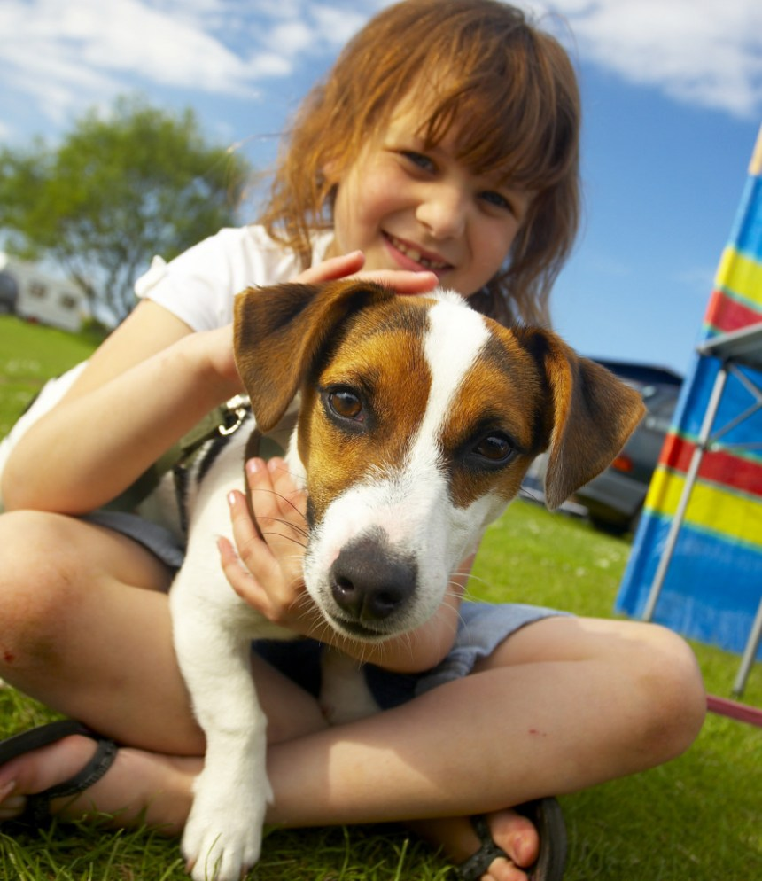 No kennels for you, Jack - pets stay free at Park Holidays  UK for a limited period