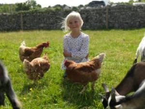 The park is also a working farm with free-range animals loved by kids