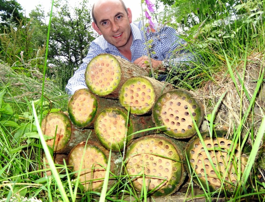 "Henry Wild with a ""glamping pod"" of logs created in the grounds of Skelwith Fold as a habitat for solitary bees"