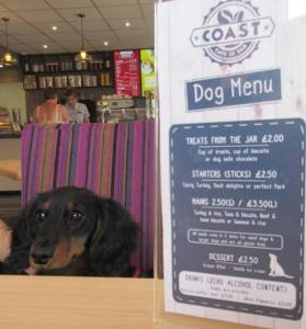 Lapping it up: Lola is spoilt for choice with her own menu
