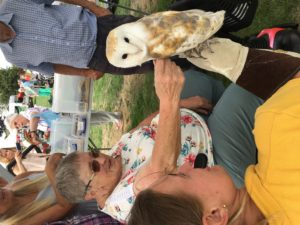 What a hoot: a friendly owl was among the guests