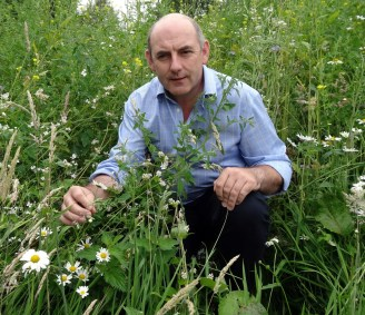 Henry Wild has planted a wildflower wilderness for the honey bees