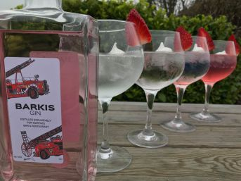 Barkis gin is a fruity grown-up treat bursting with delicious summer flavours